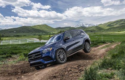 2019 Mercedes-Benz GLS 113