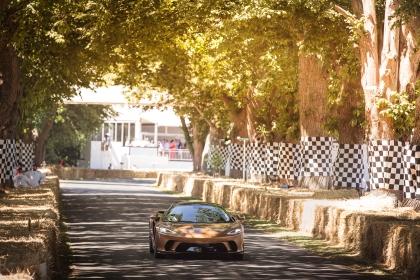 2019 McLaren GT 31