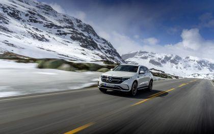 2019 Mercedes-Benz EQC 1