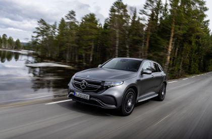 2019 Mercedes-Benz EQC 22