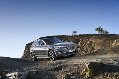 2019 BMW X1 ( F48 ) xDrive 25i 19