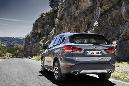 2019 BMW X1 ( F48 ) xDrive 25i 20