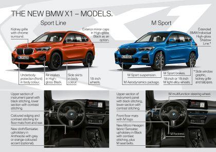 2019 BMW X1 ( F48 ) xDrive 25i 38