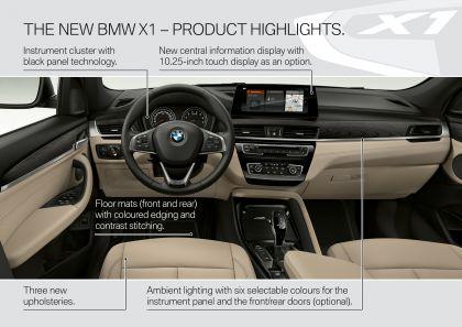 2019 BMW X1 ( F48 ) xDrive 25i 39