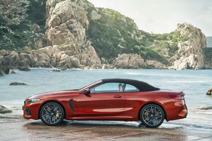 2019 BMW M8 ( F92 ) Competition convertible 11