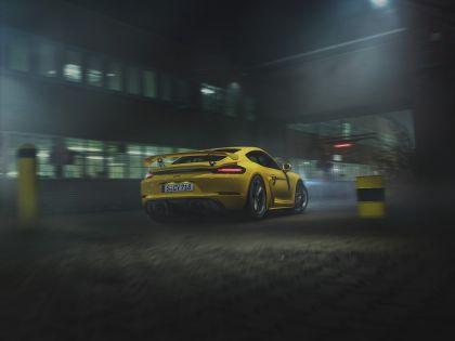 2019 Porsche 718 ( 982 ) Cayman GT4 8