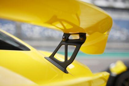 2019 Porsche 718 ( 982 ) Cayman GT4 183