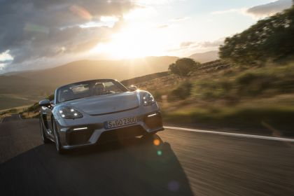 2019 Porsche 718 ( 982 ) Spyder 209