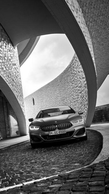 2020 BMW M850i ( G16 ) xDrive Gran Coupé 137