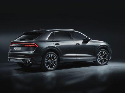 2019 Audi SQ8 TDI 3