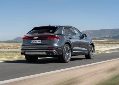 2019 Audi SQ8 TDI 16