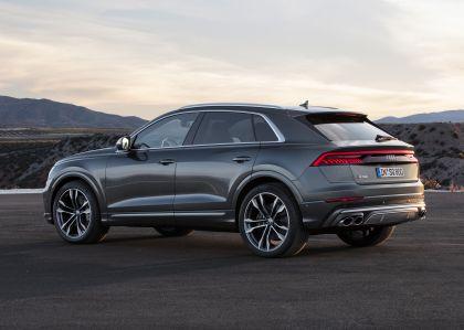 2019 Audi SQ8 TDI 22