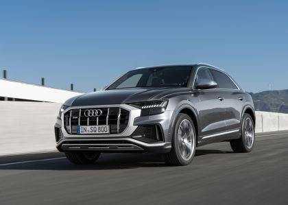 2019 Audi SQ8 TDI 23