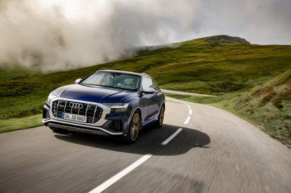 2019 Audi SQ8 TDI 25