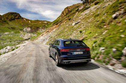 2019 Audi SQ8 TDI 46