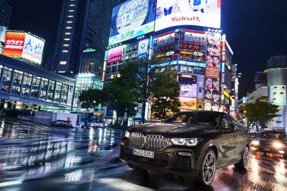 2019 BMW X6 ( G06 ) M50i 7