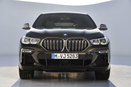 2019 BMW X6 ( G06 ) M50i 24