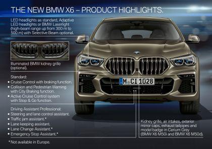 2019 BMW X6 ( G06 ) M50i 43
