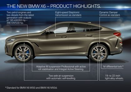 2019 BMW X6 ( G06 ) M50i 44