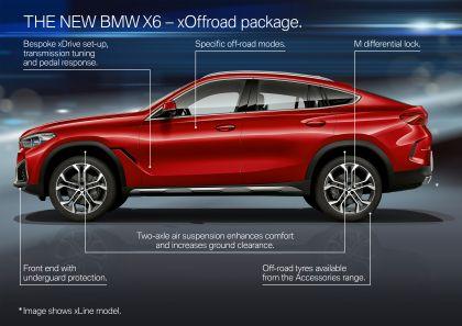2019 BMW X6 ( G06 ) M50i 47