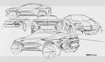 2019 BMW X6 ( G06 ) M50i 62
