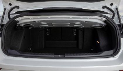 2020 Volkswagen T-Roc cabriolet 289