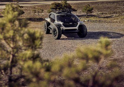 2019 Audi AI Trail quattro concept 15