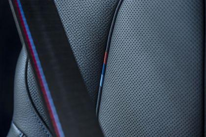 2019 BMW X1 ( F48 ) xDrive 25i M Sport 102