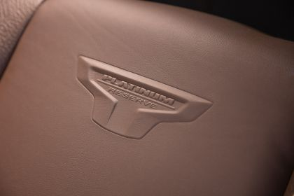 2020 Nissan Titan Platinum Reserve 32