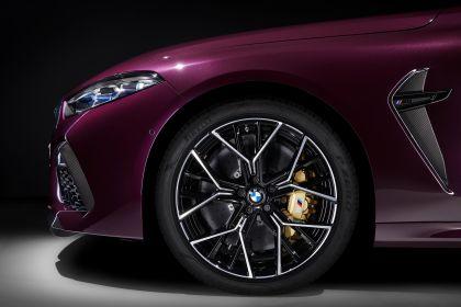 2020 BMW M8 ( F93 ) Competition Gran Coupé 22