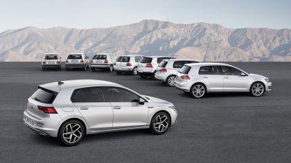 2020 Volkswagen Golf ( VIII ) 59