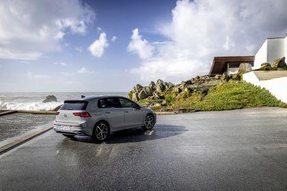 2020 Volkswagen Golf ( VIII ) 141