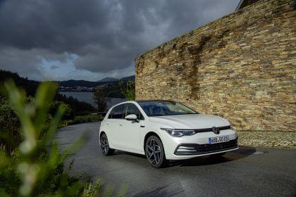 2020 Volkswagen Golf ( VIII ) 214