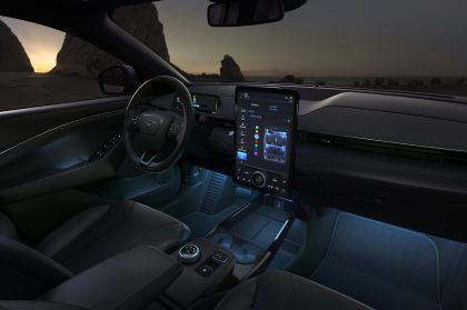 2021 Ford Mustang Mach-E 45