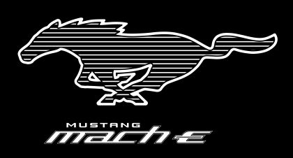 2021 Ford Mustang Mach-E 92