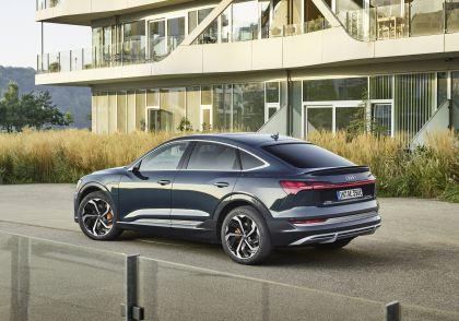 2020 Audi e-Tron Sportback 19