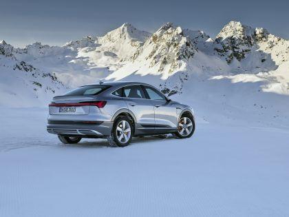 2020 Audi e-Tron Sportback 194