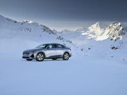 2020 Audi e-Tron Sportback 197
