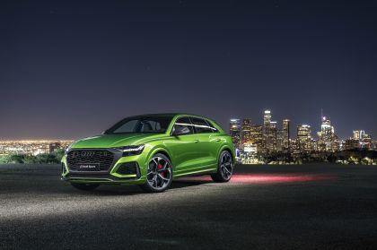 2020 Audi RS Q8 48