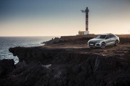 2020 Audi RS Q8 94