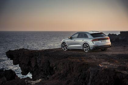 2020 Audi RS Q8 96