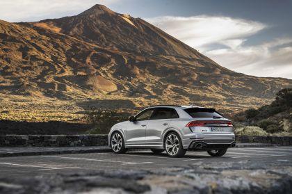2020 Audi RS Q8 101
