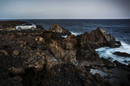 2020 Audi RS Q8 106