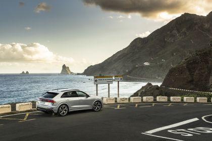 2020 Audi RS Q8 130