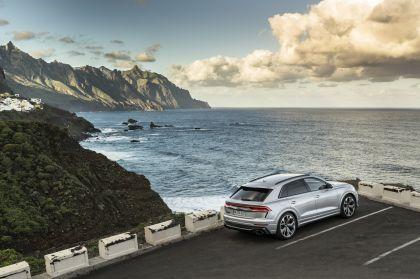 2020 Audi RS Q8 131