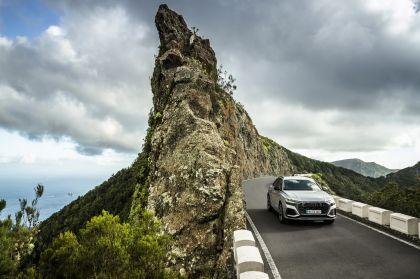 2020 Audi RS Q8 135