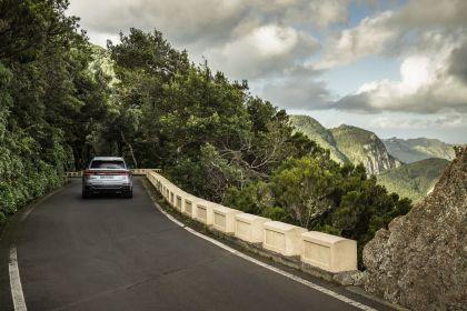 2020 Audi RS Q8 136