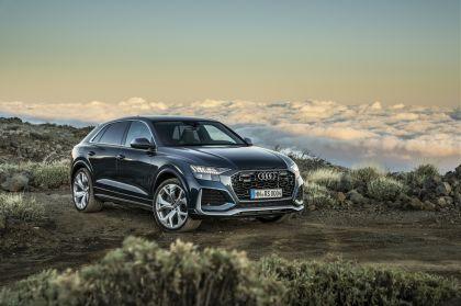 2020 Audi RS Q8 142