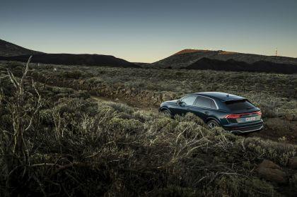 2020 Audi RS Q8 145