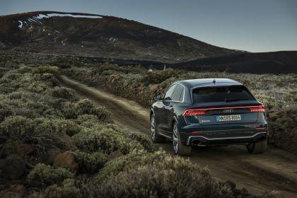 2020 Audi RS Q8 146